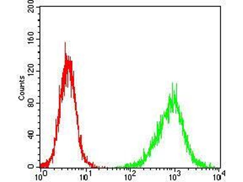 Flow Cytometry (FACS) image for anti-Prokineticin Receptor 2 (PROKR2) antibody (ABIN4881203)