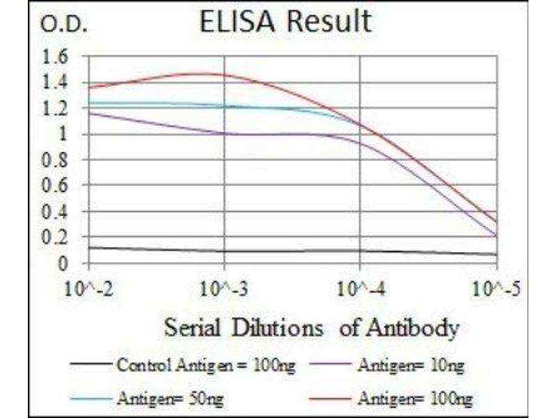 ELISA image for anti-Glutamate Receptor, Ionotropic, AMPA 2 (GRIA2) antibody (ABIN4314578)
