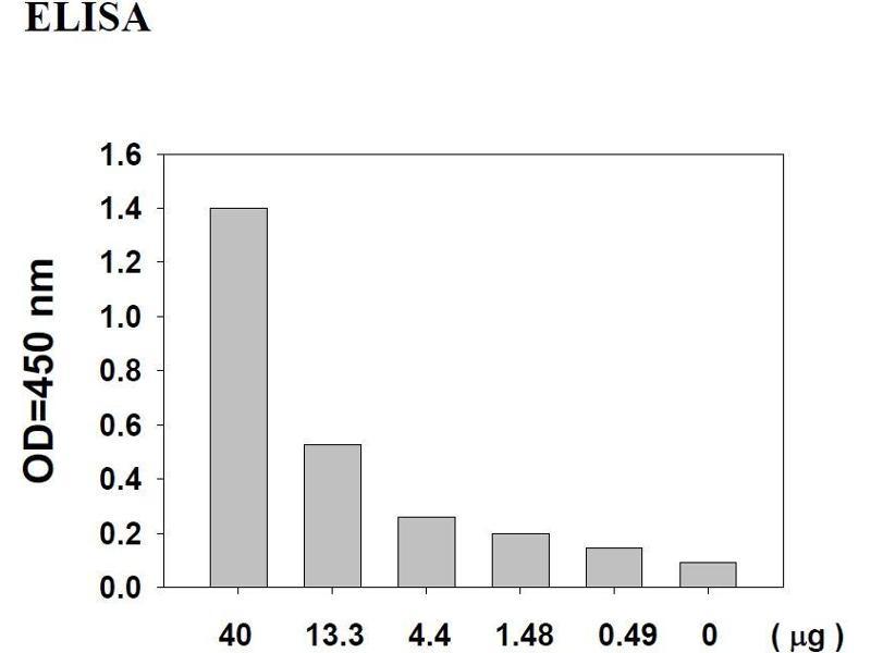 V-Akt Murine Thymoma Viral Oncogene Homolog 1 (AKT1) ELISA Kit (5)