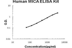 Image no. 1 for MHC Class I Polypeptide-Related Sequence A (MICA) ELISA Kit (ABIN411398)