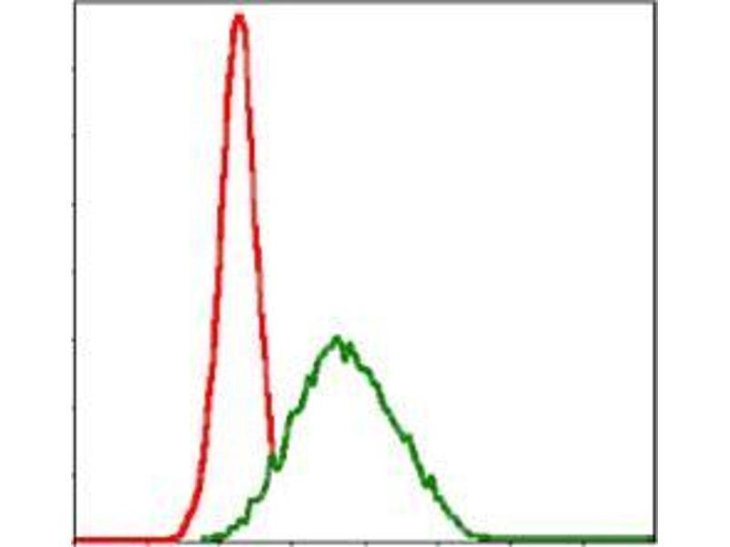 Flow Cytometry (FACS) image for anti-MutS Homolog 6 (E. Coli) (MSH6) antibody (ABIN969293)