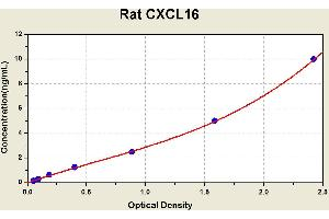Image no. 1 for Chemokine (C-X-C Motif) Ligand 16 (CXCL16) ELISA Kit (ABIN1114087)