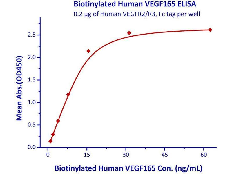 Image no. 3 for VEGF 165 (AA 27-191) (Active) protein (AVI tag,Biotin,His tag) (ABIN4949042)