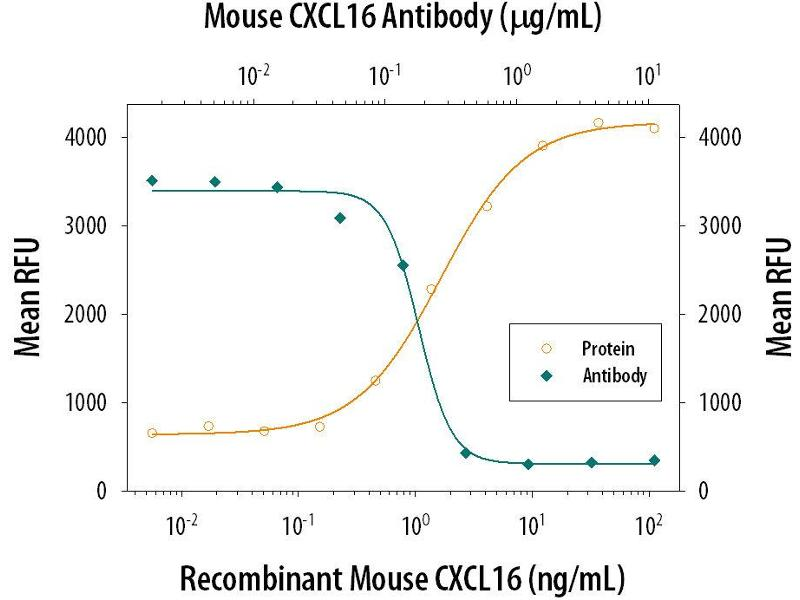 Neutralization (Neut) image for anti-Chemokine (C-X-C Motif) Ligand 16 (CXCL16) (AA 27-114) antibody (ABIN4899997)
