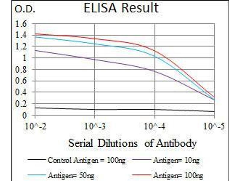 ELISA image for anti-Chromogranin A (CHGA) antibody (ABIN4880257)