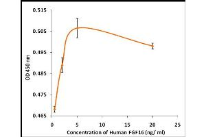Image no. 1 for Fibroblast Growth Factor 16 (FGF16) (Active) protein (ABIN5509484)