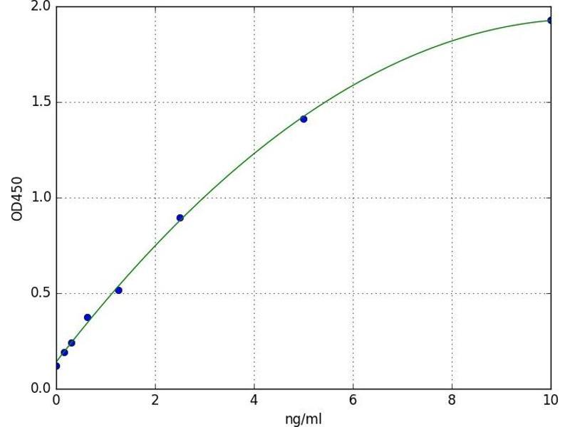 Protein Phosphatase 3, Regulatory Subunit B, alpha (PPP3R1) ELISA Kit
