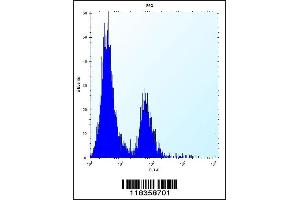 Image no. 3 for anti-Carbonic Anhydrase I (CA1) (AA 60-90), (N-Term) antibody (ABIN656574)