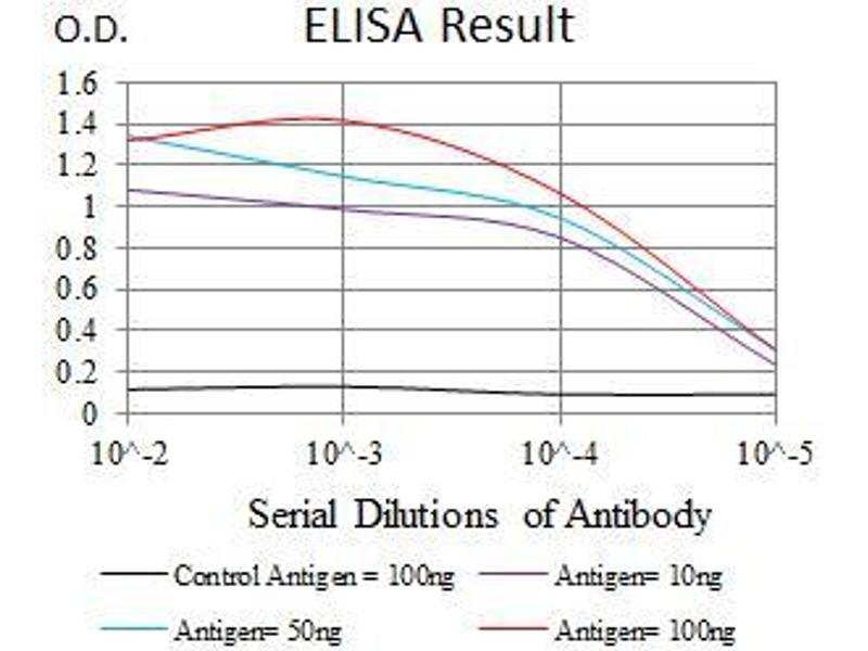 ELISA image for anti-Tumor Protein P53 Binding Protein 1 (TP53BP1) (AA 574-773) antibody (ABIN1724820)