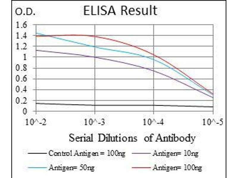ELISA image for anti-Glucose-6-Phosphate Dehydrogenase (G6PD) antibody (ABIN969161)