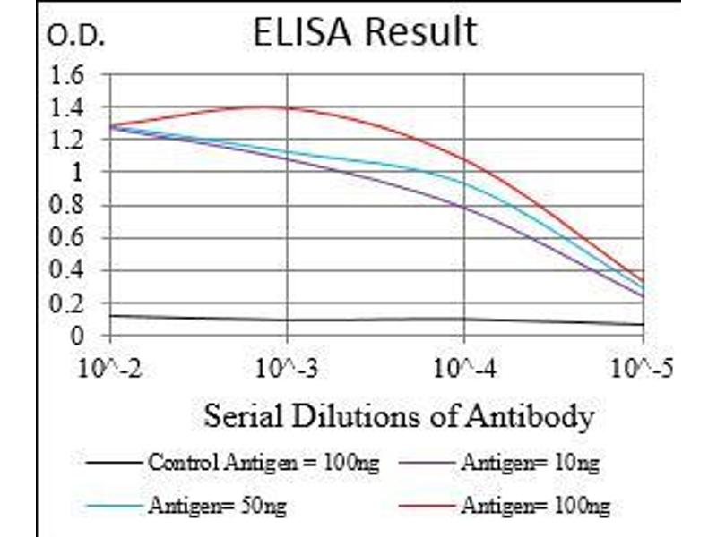 ELISA image for anti-BCL2-Associated Agonist of Cell Death (BAD) (AA 1-168), (full length) antibody (ABIN5542486)