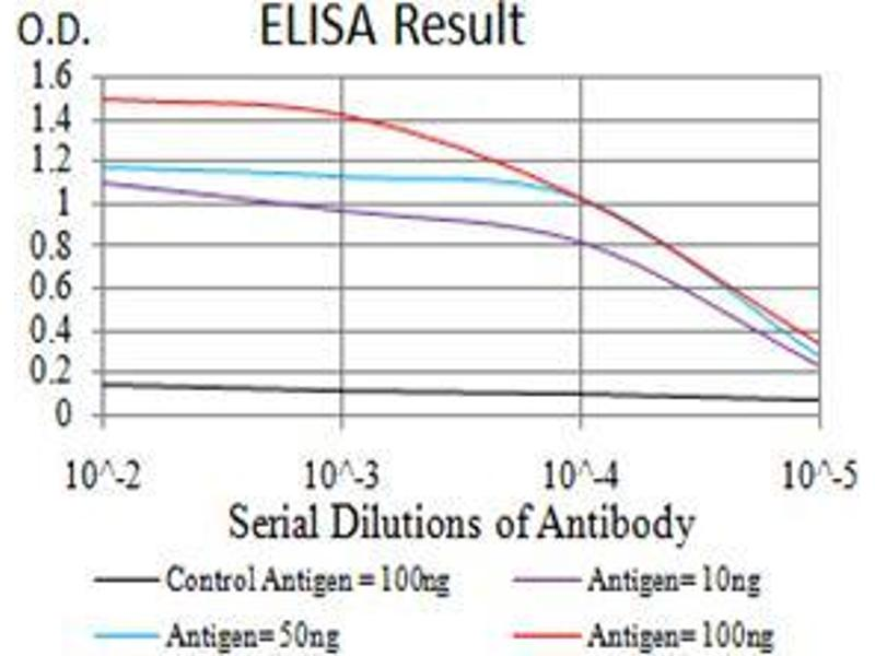 ELISA image for anti-Bone Morphogenetic Protein 7 (BMP7) (AA 239-431) antibody (ABIN5542287)