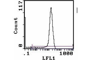 Flow Cytometry (FACS) image for anti-CD8 antibody (CD8a Molecule)  (FITC) (ABIN114166)