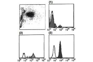 Flow Cytometry (FACS) image for anti-Cytochrome B-245, alpha Polypeptide (CYBA) antibody (FITC) (ABIN1449194)