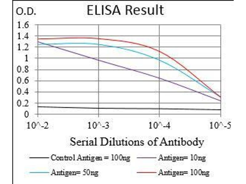 ELISA image for anti-BDNF antibody (Brain-Derived Neurotrophic Factor) (AA 19-248) (ABIN1724944)