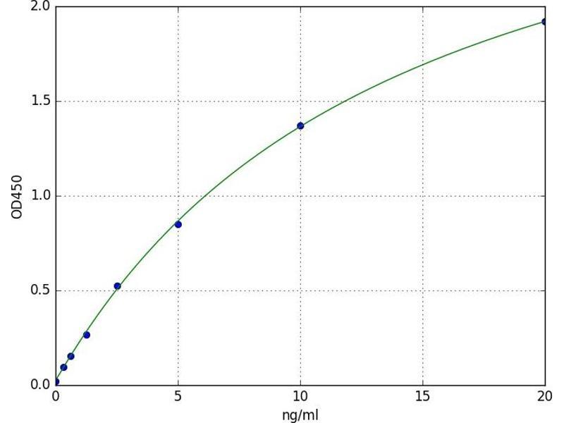 Poly (ADP-Ribose) Polymerase 2 (PARP2) ELISA Kit