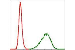 Flow Cytometry (FACS) image for anti-Tubulin, alpha 8 (TUBA8) antibody (ABIN969446)