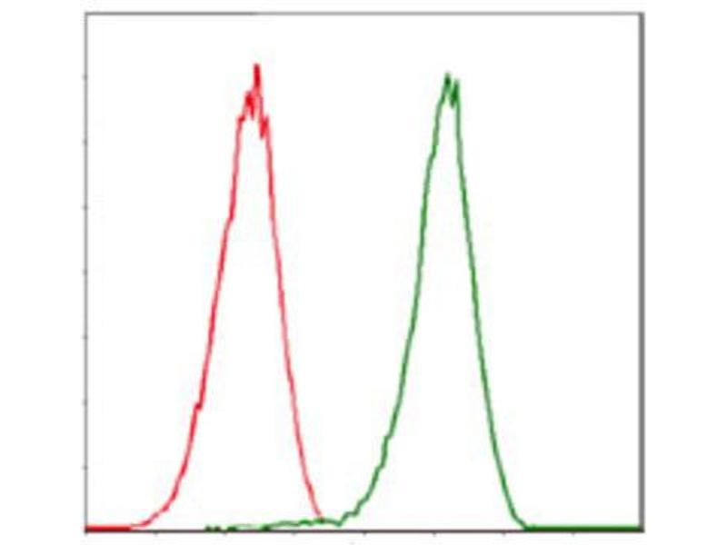 Flow Cytometry (FACS) image for anti-Cyclin-Dependent Kinase 2 (CDK2) antibody (ABIN1845617)