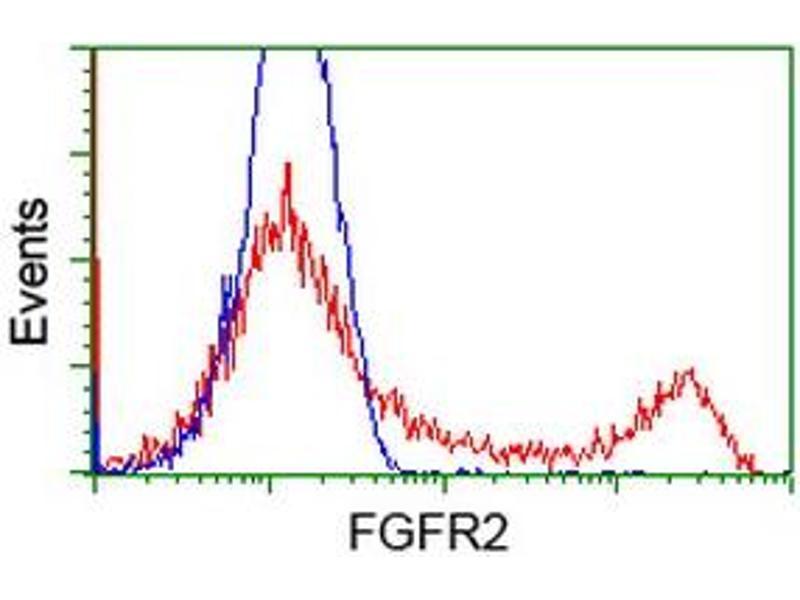 Flow Cytometry (FACS) image for anti-Fibroblast Growth Factor Receptor 2 (FGFR2) antibody (ABIN2454751)