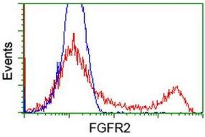 Flow Cytometry (FACS) image for anti-Fibroblast Growth Factor Receptor 2 (FGFR2) antibody (ABIN2454751)