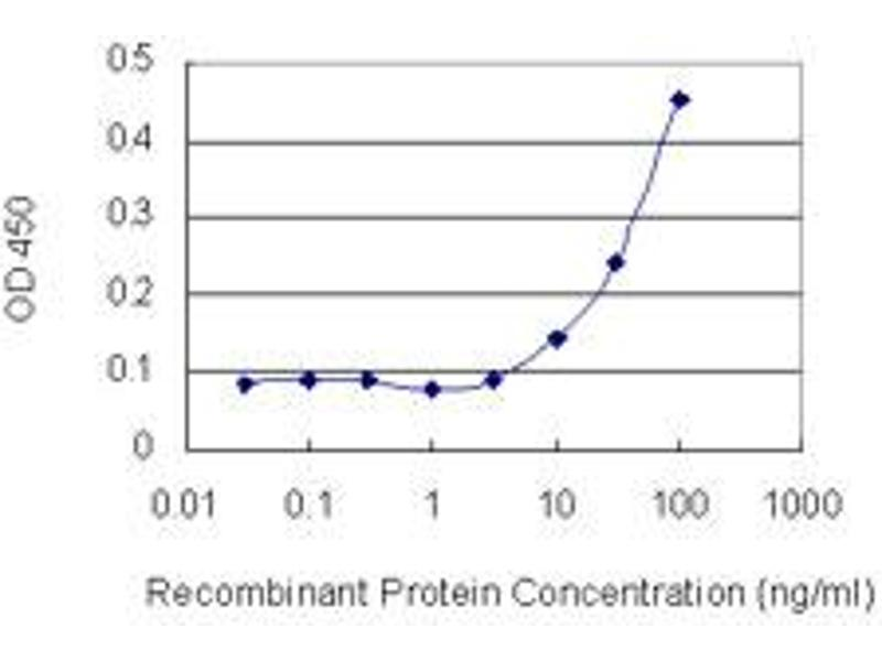 ELISA image for anti-phospholipase C beta 2 (PLCb2) (AA 1-199), (full length) antibody (ABIN518949)