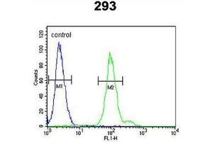 Flow Cytometry (FACS) image for anti-Complement Factor B (CFB) (AA 474-504), (Middle Region) antibody (ABIN951644)