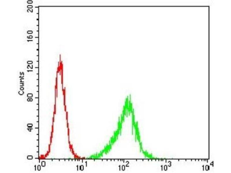Flow Cytometry (FACS) image for anti-Phospholipase C gamma 2 (PLCG2) antibody (ABIN4238828)