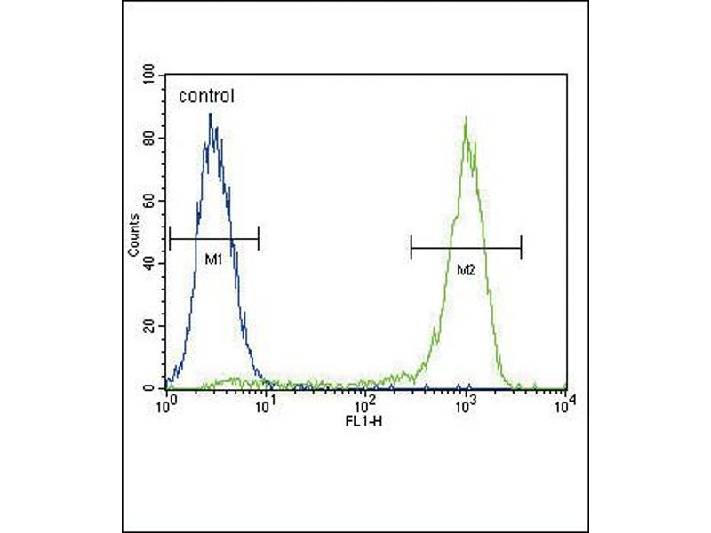 Flow Cytometry (FACS) image for anti-AKT antibody (V-Akt Murine Thymoma Viral Oncogene Homolog 1) (C-Term) (ABIN2159031)