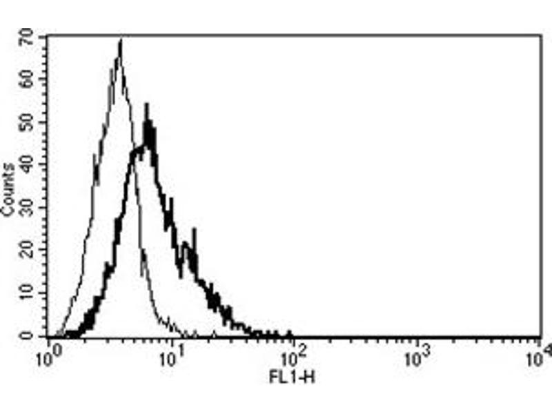 Flow Cytometry (FACS) image for anti-CD40 Ligand antibody (CD40LG) (ABIN1105904)