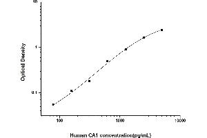 Image no. 1 for Carbonic Anhydrase I (CA1) ELISA Kit (ABIN6962074)