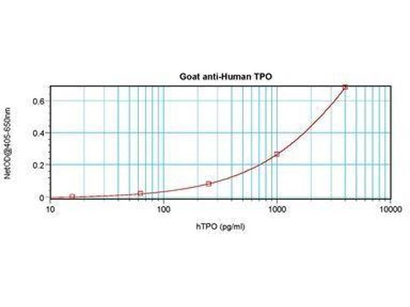 image for anti-Thrombopoietin antibody (THPO) (ABIN465841)