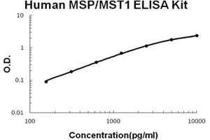 ELISA image for Macrophage Stimulating 1 (Hepatocyte Growth Factor-Like) (MST1) ELISA Kit (ABIN1889321)