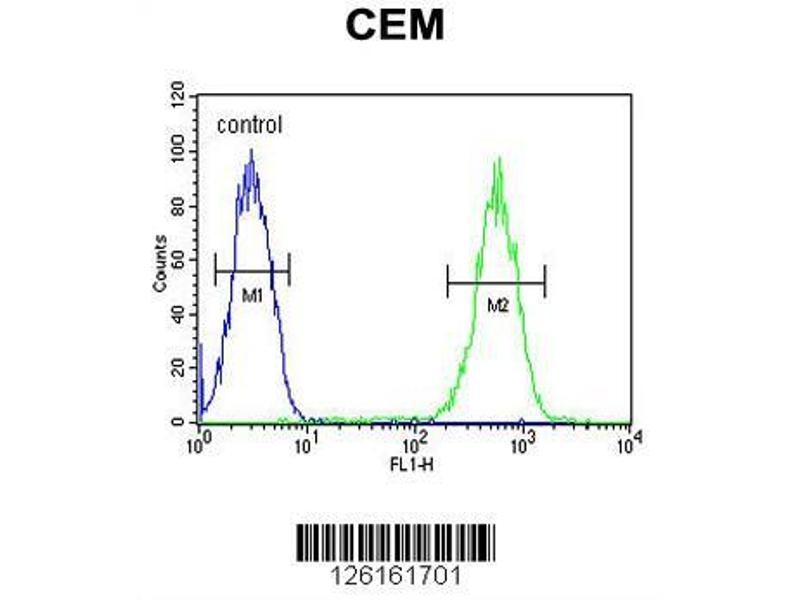 Flow Cytometry (FACS) image for anti-Fatty Acid Desaturase 2 (FADS2) (AA 96-122), (Center) antibody (ABIN651561)