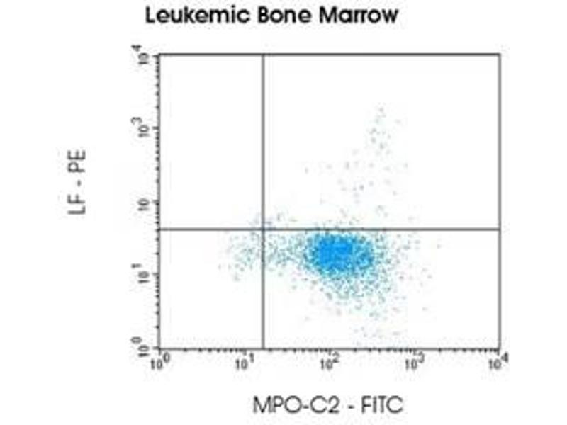 Image no. 2 for anti-Myeloperoxidase-C2 (FITC) and anti-Lactoferrin (PE) antibody pair (ABIN5662641)