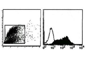 Flow Cytometry (FACS) image for anti-MFGE8 antibody (Milk Fat Globule-EGF Factor 8 Protein) (ABIN1449192)