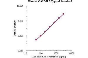 Image no. 1 for Calmodulin-Like 5 (CALML5) ELISA Kit (ABIN3199200)