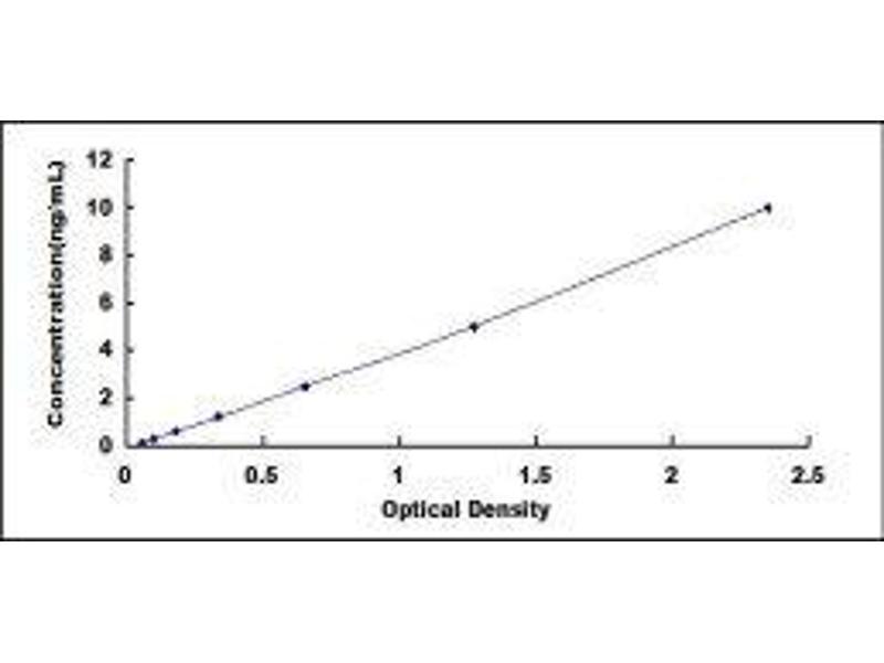 NAD Dependent Malate Dehydrogenase (NAD-ME) ELISA Kit