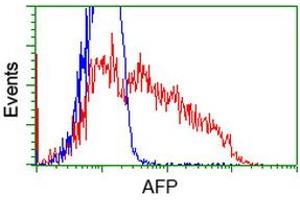 Image no. 2 for anti-alpha-Fetoprotein (AFP) antibody (ABIN1496485)