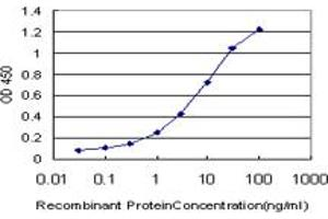 Image no. 5 for anti-CAMP Responsive Element Binding Protein 5 (CREB5) (AA 1-100) antibody (ABIN599087)