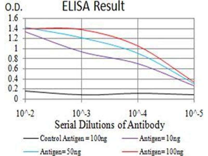 ELISA image for anti-Autophagy Related 13 (ATG13) (AA 339-550) antibody (ABIN5542702)