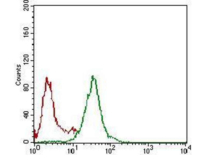 Flow Cytometry (FACS) image for anti-Nibrin (NBN) (AA 467-615) antibody (ABIN1724942)