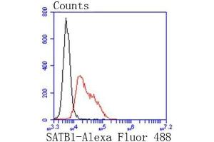 Flow Cytometry (FACS) image for anti-SATB Homeobox 1 (SATB1) (C-Term) antibody (ABIN5950136)