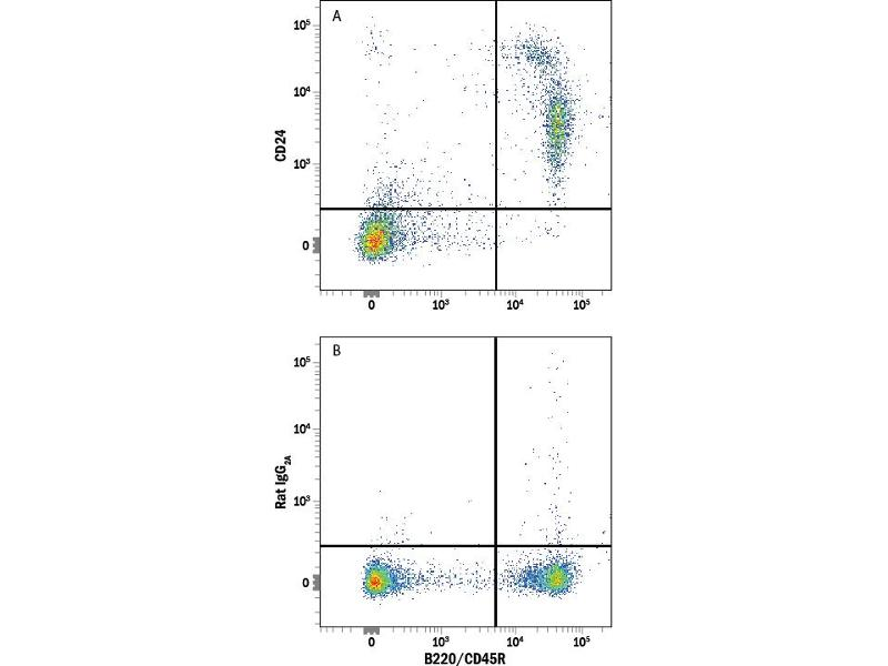 Flow Cytometry (FACS) image for anti-CD24 Molecule (CD24) antibody (ABIN4900704)
