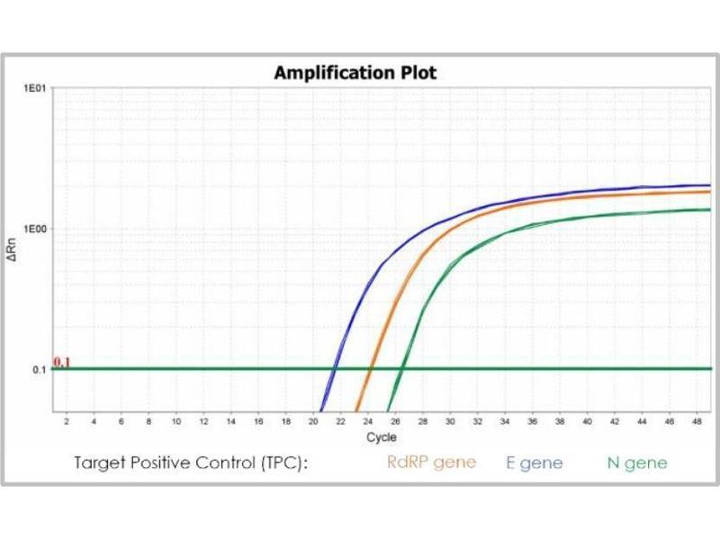 Image no. 1 for PhoenixDx® 2019-nCoV RNA Detection Kit (ABIN6952137)