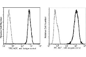 Flow Cytometry (FACS) image for anti-AGT antibody (Angiotensinogen (serpin Peptidase Inhibitor, Clade A, Member 8)) (AA 1-485) (FITC) (ABIN1997928)