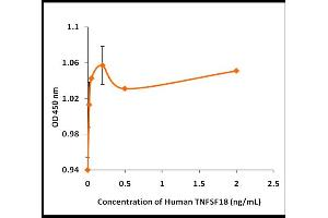 Image no. 1 for Tumor Necrosis Factor (Ligand) Superfamily, Member 18 (TNFSF18) (Active) protein (ABIN5509483)