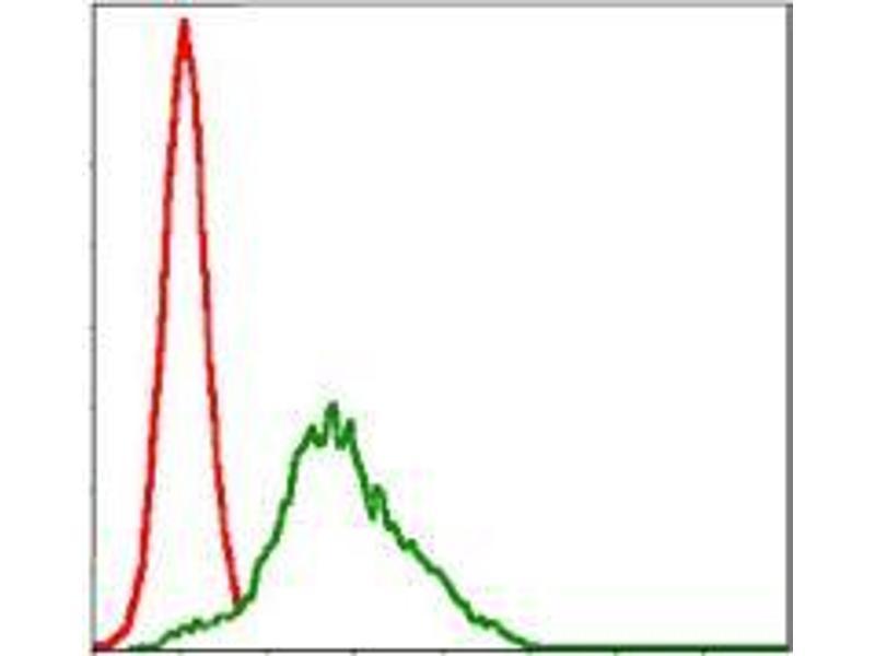 Flow Cytometry (FACS) image for anti-Ribosomal Protein S6 Kinase, 90kDa, Polypeptide 3 (RPS6KA3) antibody (ABIN969386)
