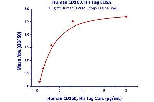 Image no. 2 for CD160 Molecule (CD160) (AA 27-159) (Active) protein (His tag) (ABIN2444058)