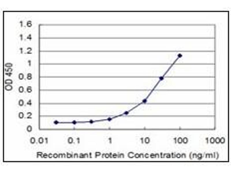 ELISA image for anti-Engrailed Homeobox 1 (EN1) antibody (ABIN781856)
