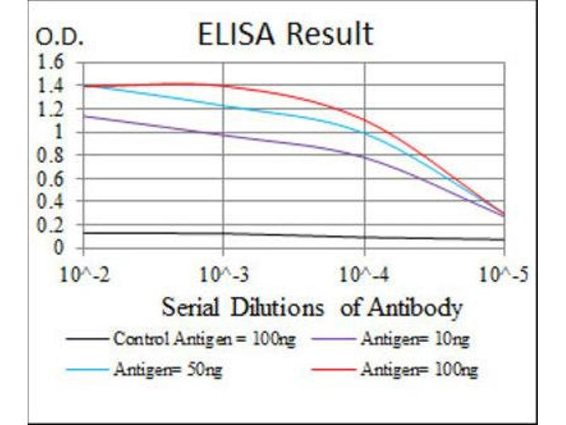 ELISA image for anti-Mitogen-Activated Protein Kinase Kinase 7 (MAP2K7) antibody (ABIN1843862)